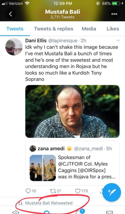 Mustafa Bali-Tony Soprano